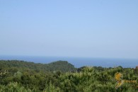 Land to buy in Santa Maria de Llorell