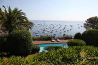 garden pool view
